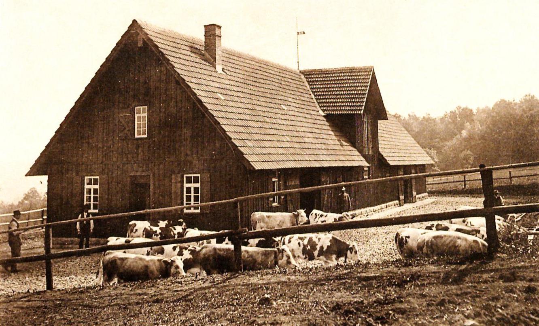 1889. Jungviehweide Waldenbuch, Sommerstall mit Wohngebäude