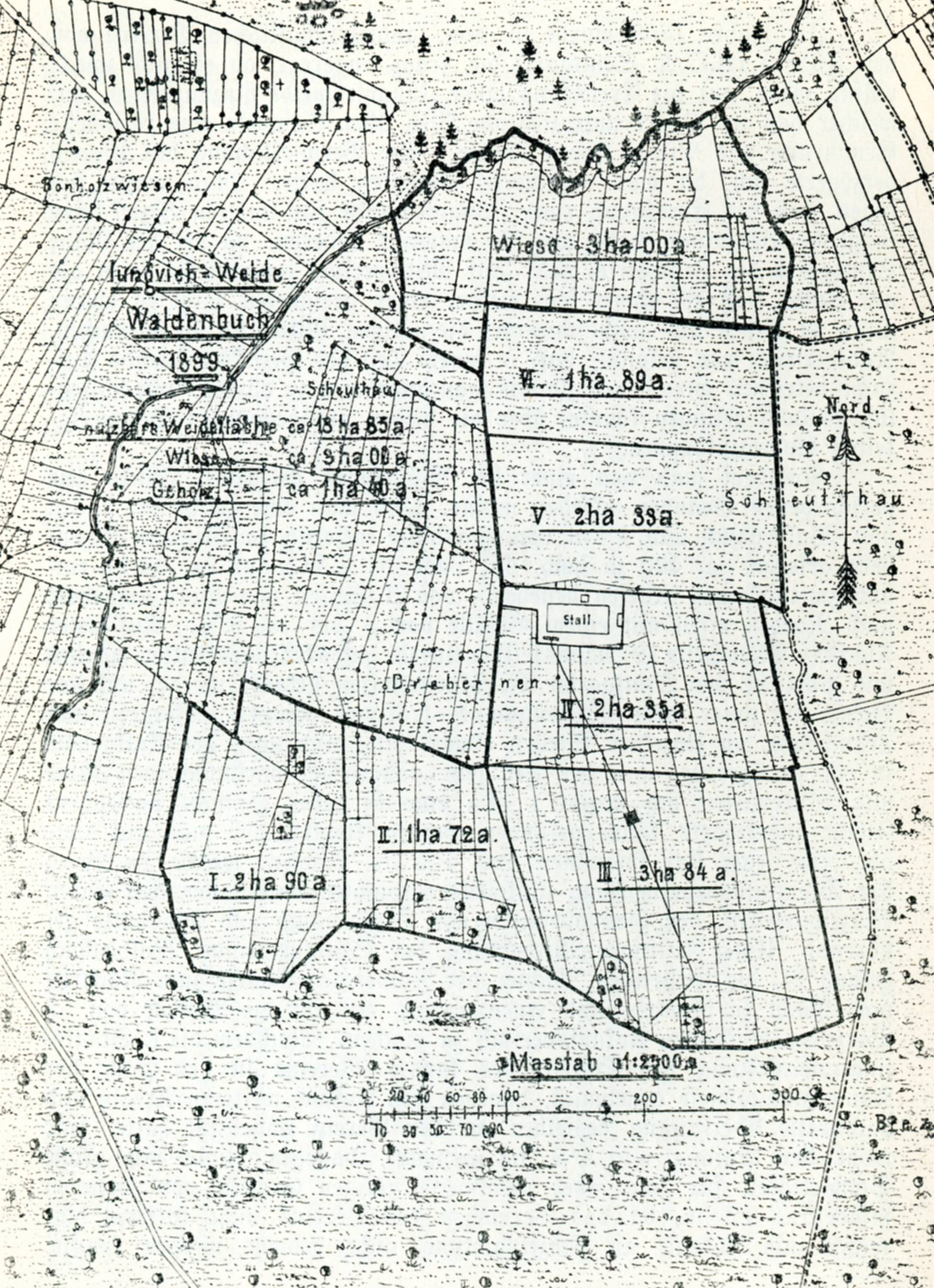 1889. Plan der Jungviehweide Waldenbuch