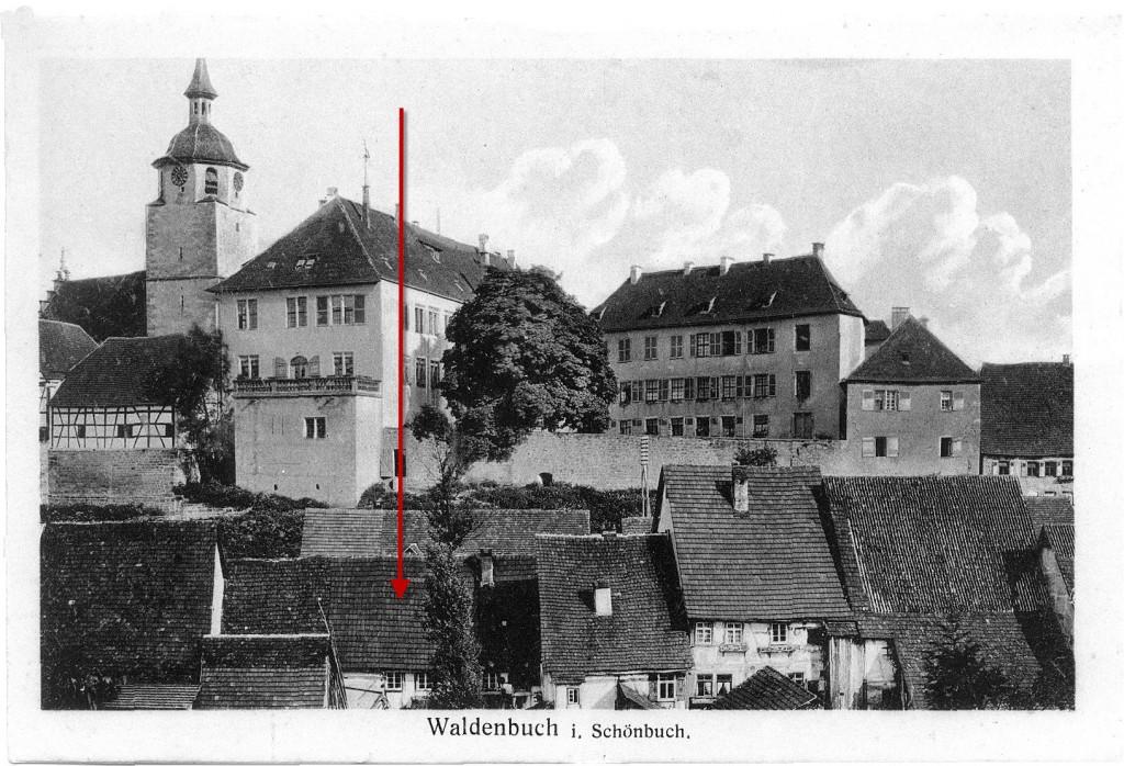 Schloss_Foto_Sting_Tuebingen-Strich